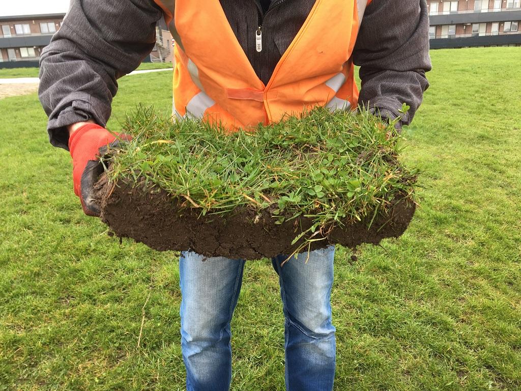 Stap 5 Plag opnemen met gras boven en samenhang beoordelen.
