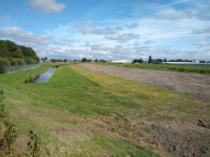 Kleikap tegen droogtescheuren (Rijnland)