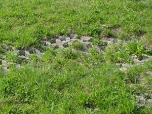 Doorgroeistenen met erosieschade
