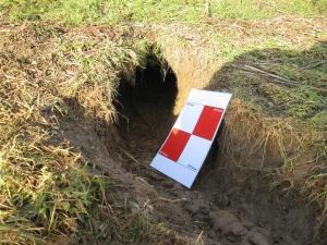 Graverij groot gevorderd stadium (Digigids)